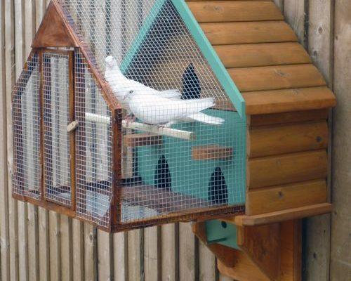 zelf-duivenhok-maken-bouwtekening-doehet-zelver