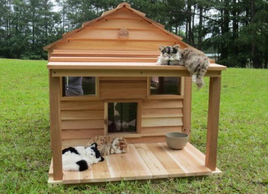 kattenhuisjes voor buiten maken