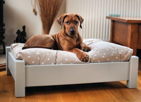 zelf-honden-mand-steigerhout-maken-doe-het-zelver